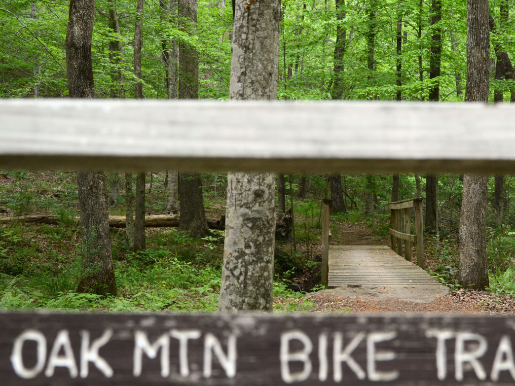 Oak Mountain State Park has something for mountain bikers of any skill level, from kids and beginners to experts.