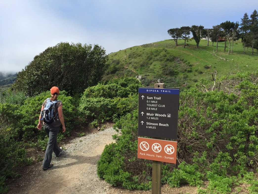 The Dipsea Trail is a must-do for any Bay Area trail enthusiast.