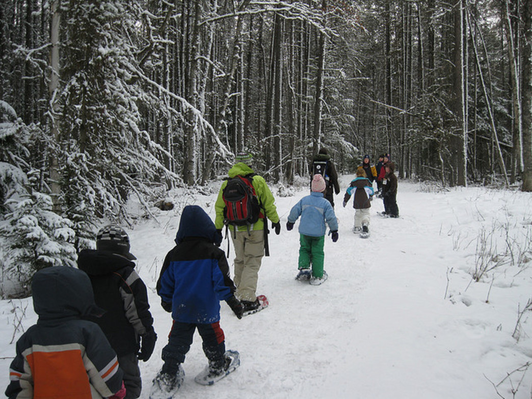 Strap on your snowshoes and bring the whole family for a hike.