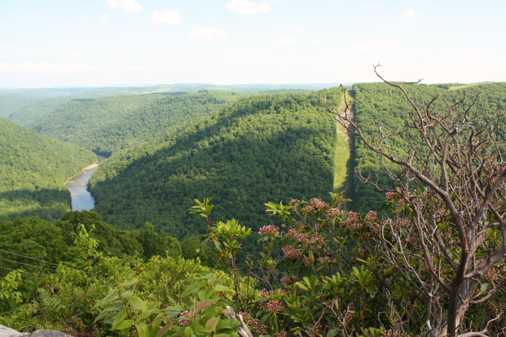 The 1.5-mile trail to Ravens Rock Overlook is perfect for a romp with your pup.