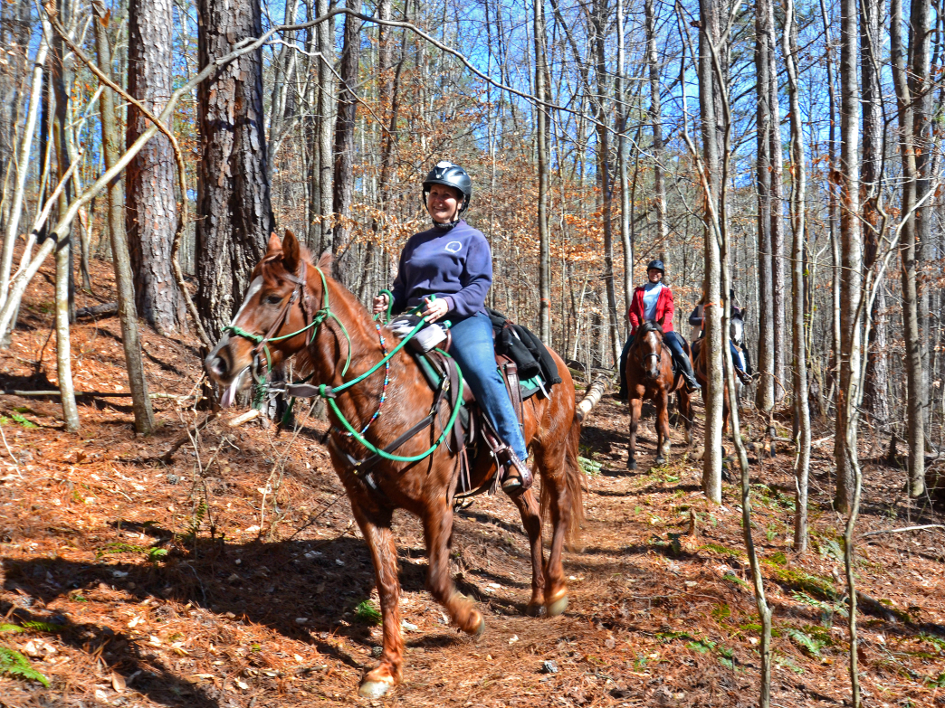 Horse-back Riders on the Trail