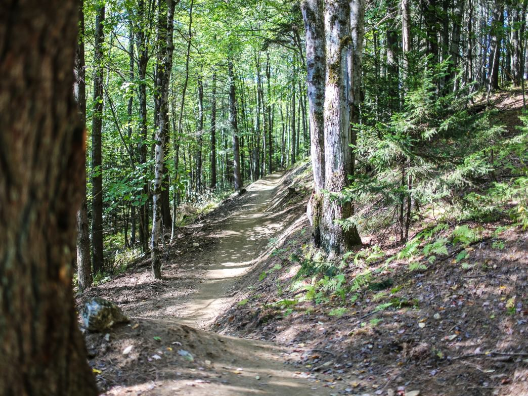 Cady Hill Forest Trail Running