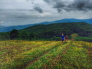 Siler Bald hiking
