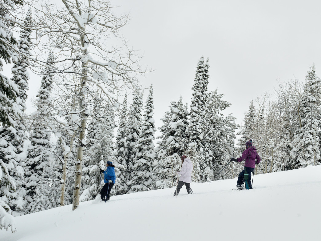Don some snowshoes and play in the powder on the two designated snowshoeing trails.