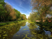 Image for Illinois and Michigan Canal Trail