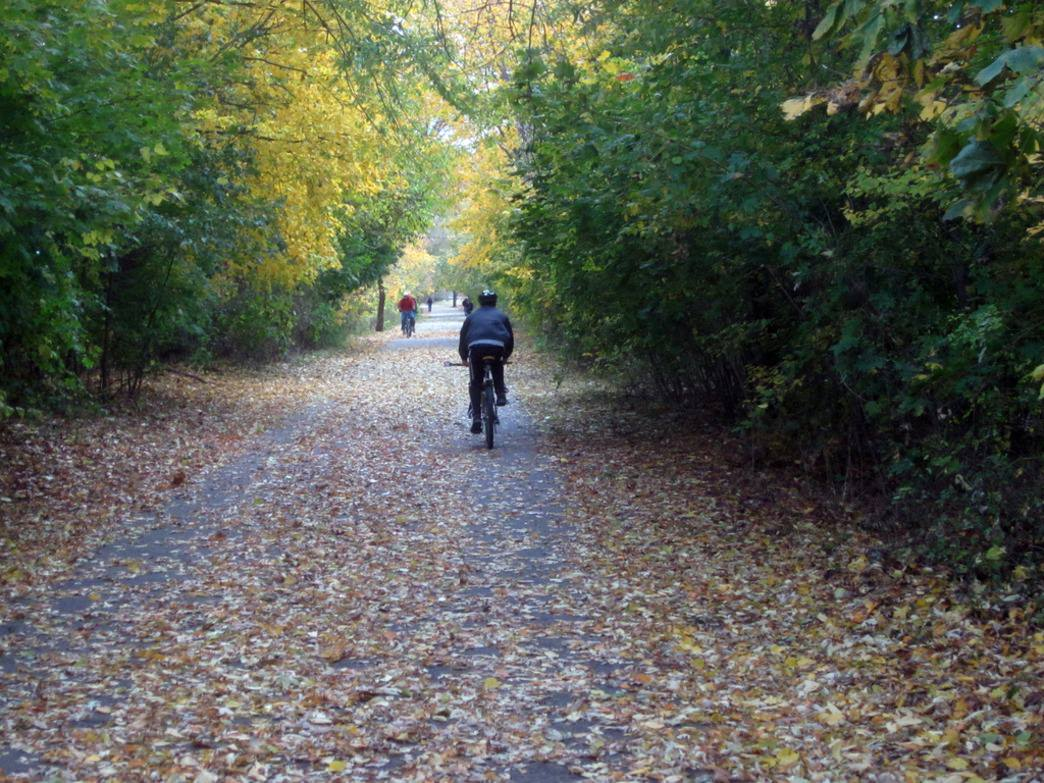 The Lexington Bike Path, or Minuteman Bikeway, is an historic 10 mile bike path that runs through 4 cities.