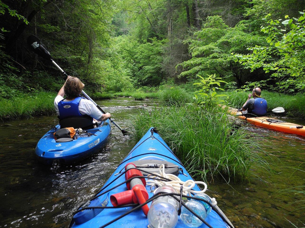 Tennessee Valley Canoe Club paddlers explore a side creek.