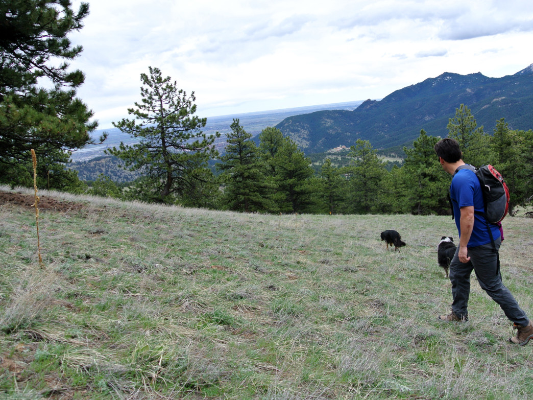 There are so many options for hiking in Boulder and all of the trails have unbeatable views.