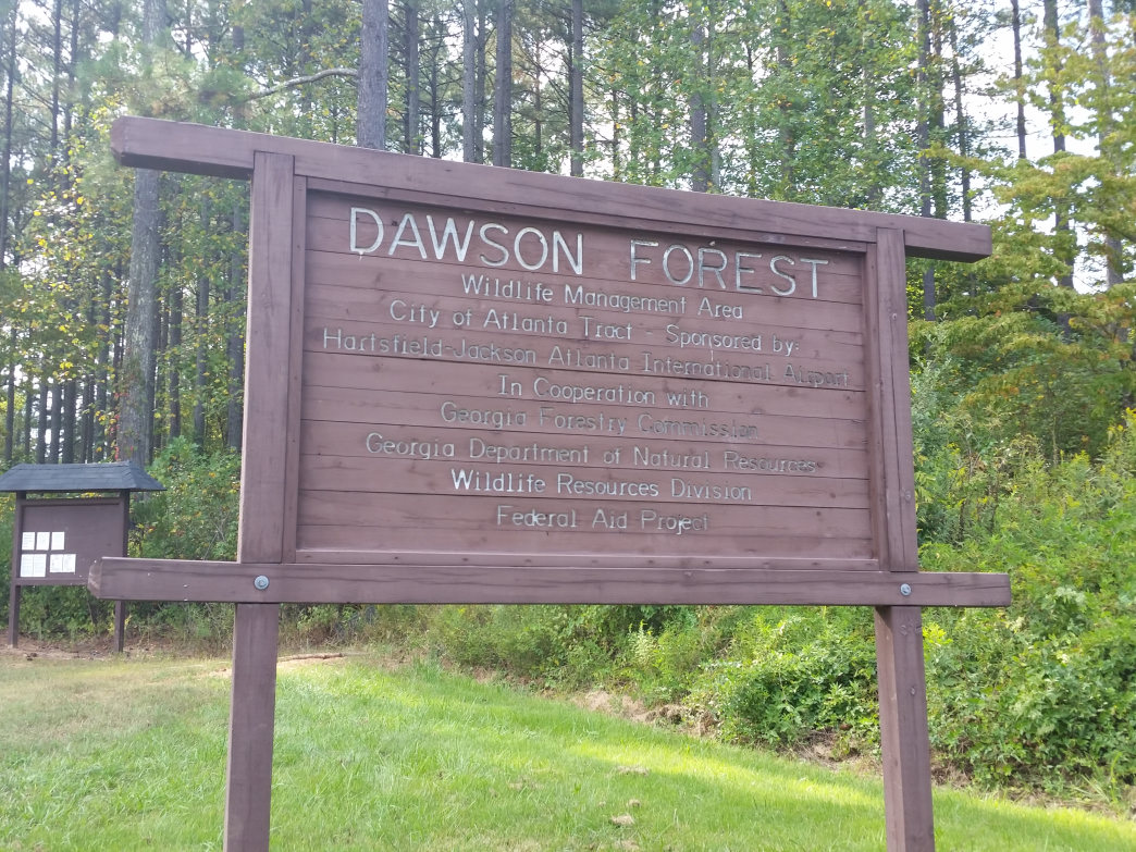 Dawson Forest Wildlife Management Area is home to more than 25,000 acres of forest area located just 60 miles north of Atlanta.