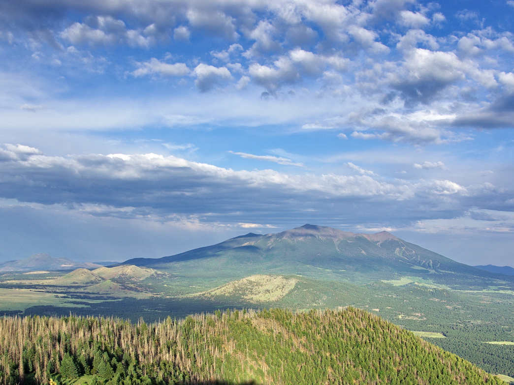 San Francisco Peaks from atop Kendrick