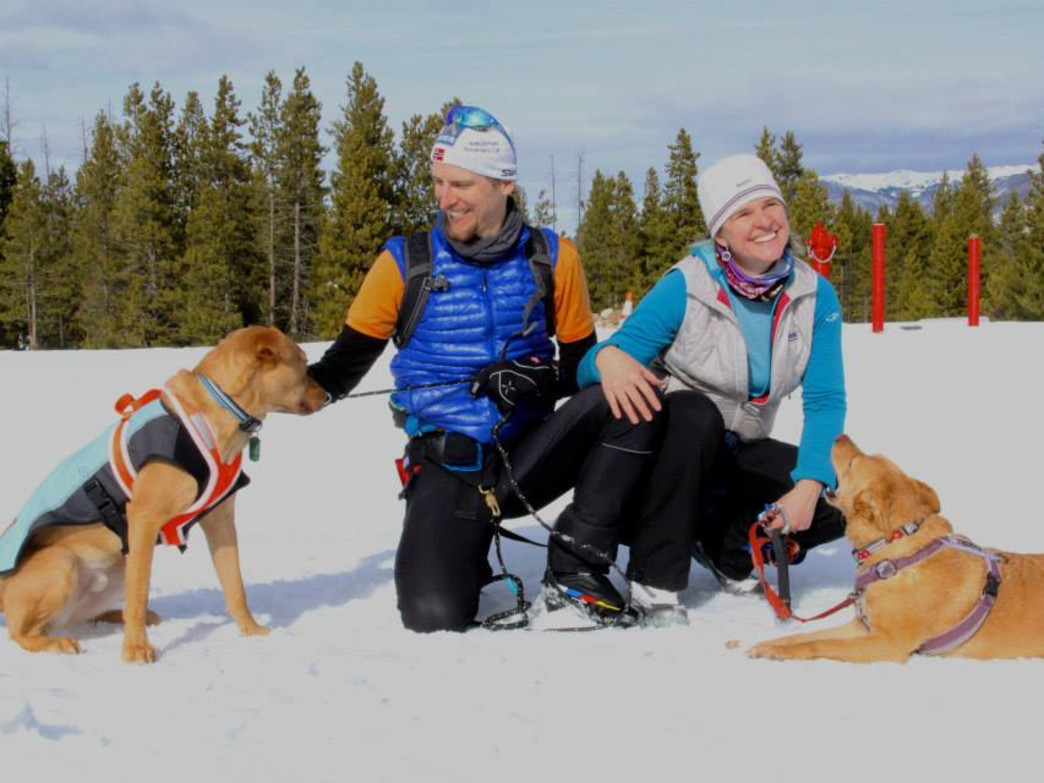High Country Dogs provides skijoring lessons at Aspen Animal Shelter on Fridays and Saturdays.