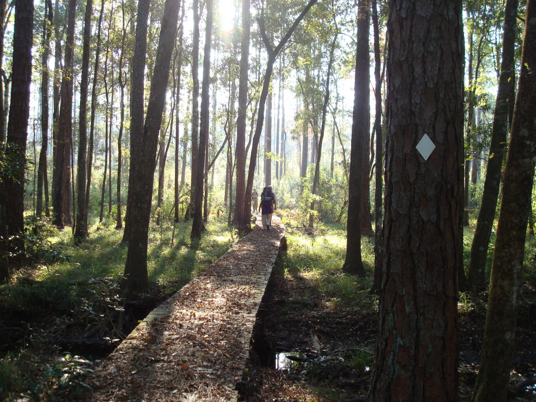 Hikers head south heading to Florida on the Conecuh Trail, part of the Great Eastern Trail.