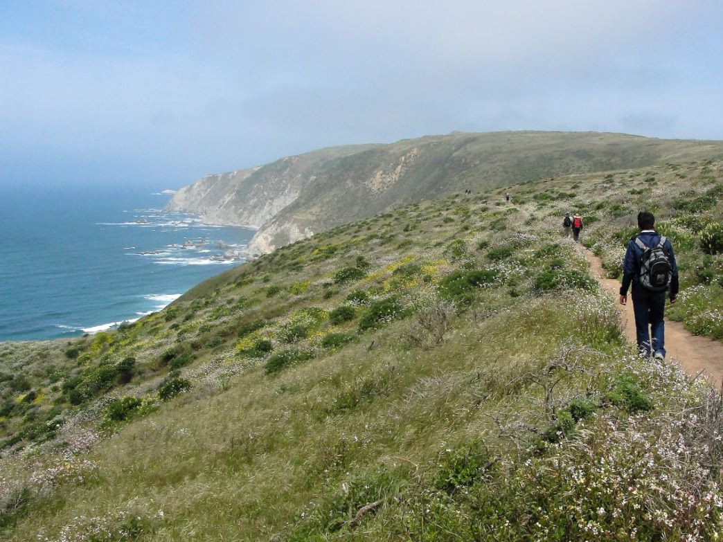 Hikers make their way along the Tomales Point Trail.