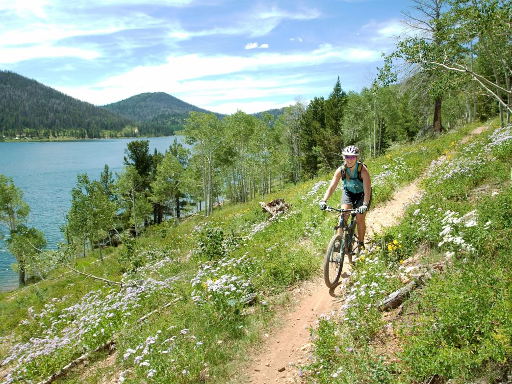 The 3.5-mile Navajo Loop is 3.5 features views of the lake as well as a trip through alpine forests and meadows .