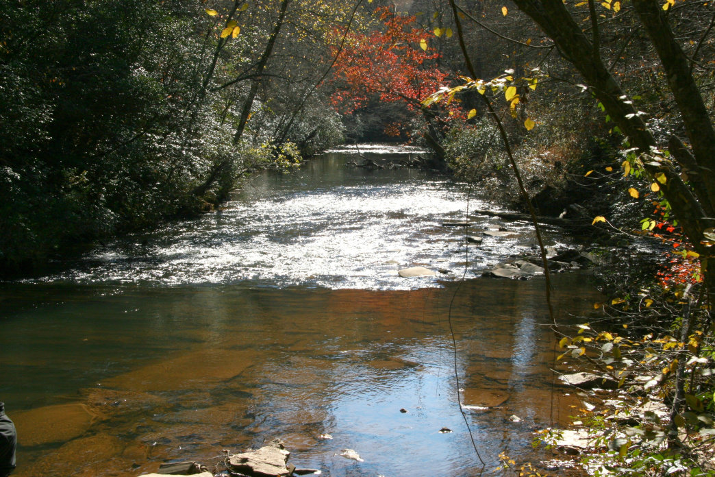 Shoal Creek meets the Etowah River in the Dawson Forest Wildlife Management Area.