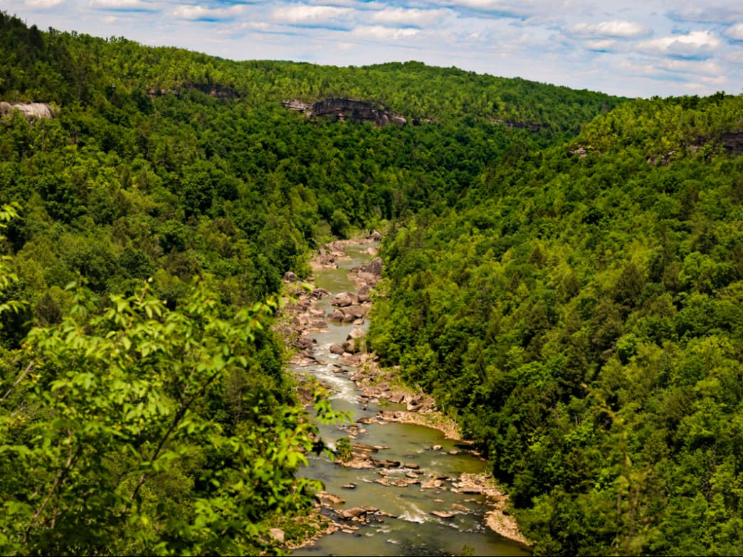 The Honey Creek vista overlooks the rushing waters of Big South Fork.