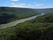 20170607_Tennessee_Chattanooga_Julia Falls Overlook_Hiking3