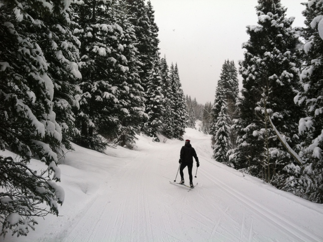 A skate skier glides up the freshly groomed Trout Lake track through falling snowflakes.