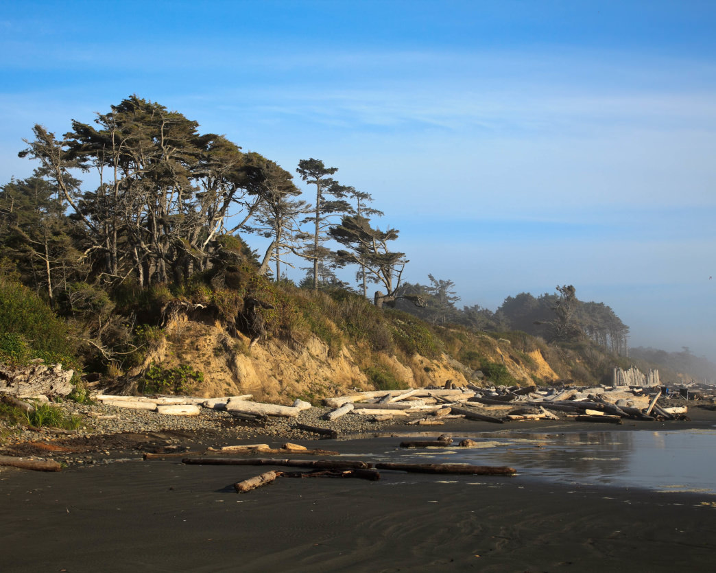Some sites at the Kalaloch Campground in the Olympic National Park overlap the Pacific Ocean.