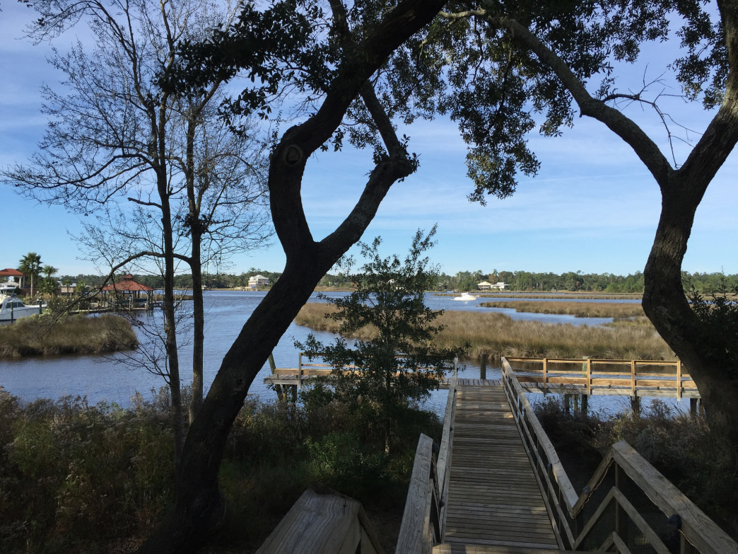 Away from the beach, you can explore some excellent natural settings on the Mississippi coast.
