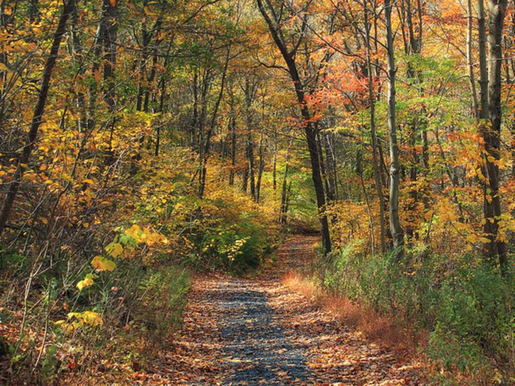 The Appalachian Trail is a perfect place for an early winter hike.