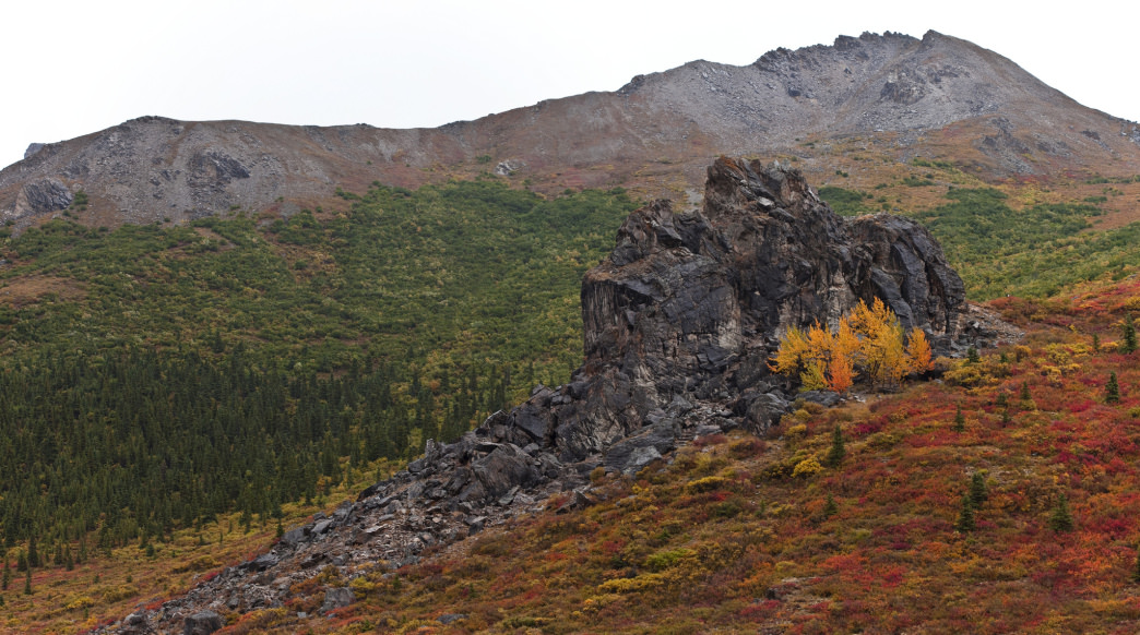 Denali is even more wild once the crowds leave and winter is on the horizon.