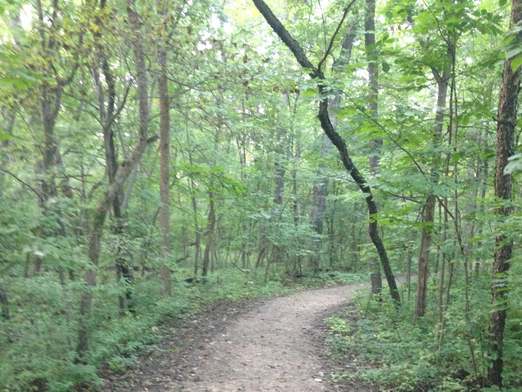 Knoch Knolls doesn't have very long trails, but they are a lot of fun.