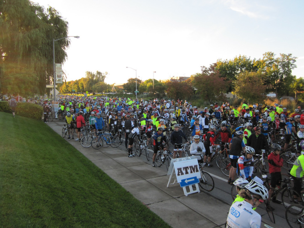 Riders line up at the start of Levi's Gran Fondo in Santa Rosa.