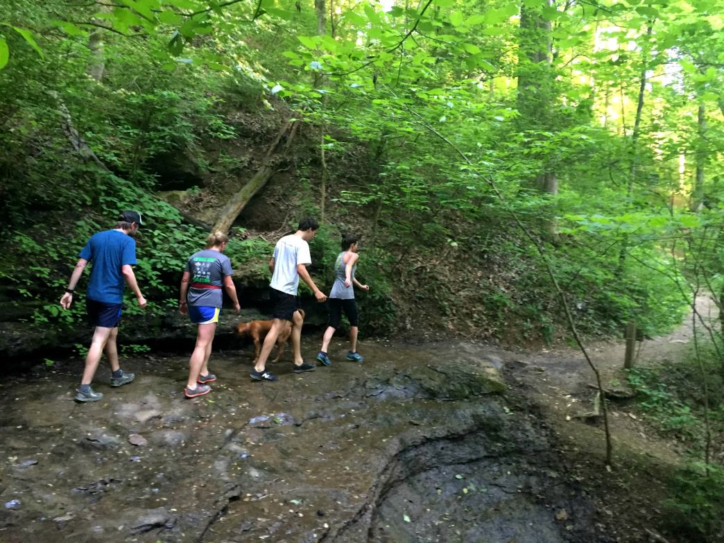 The 10 Best Hikes In Nashville