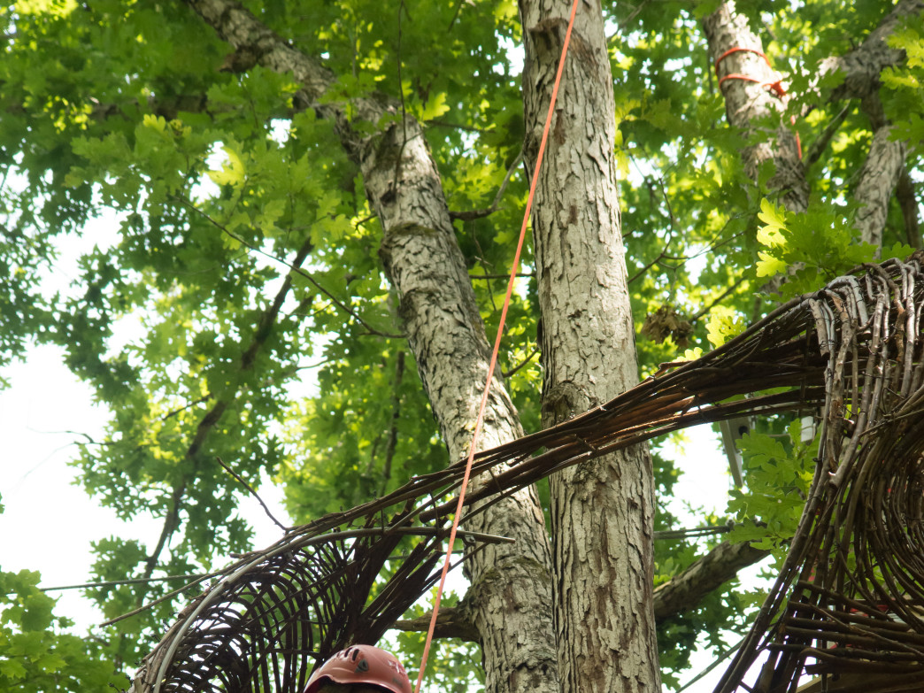 Kelly at work on the Navitat Canopy Course