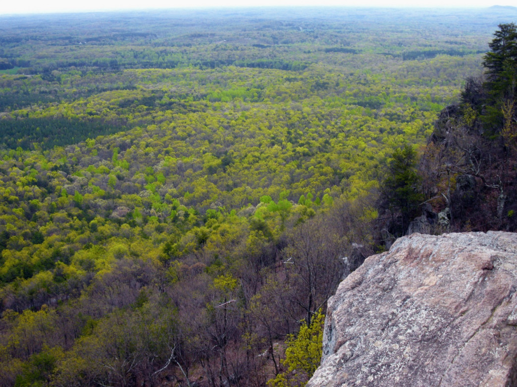 A view from the summit of Crowders Mountain