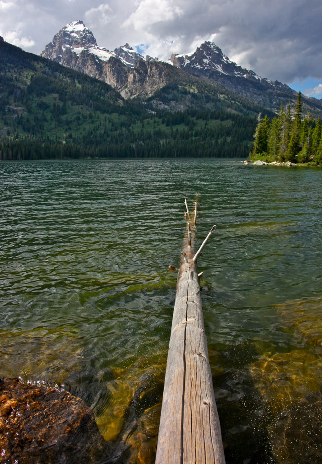 Yearning towards the Tetons at Taggart Lake