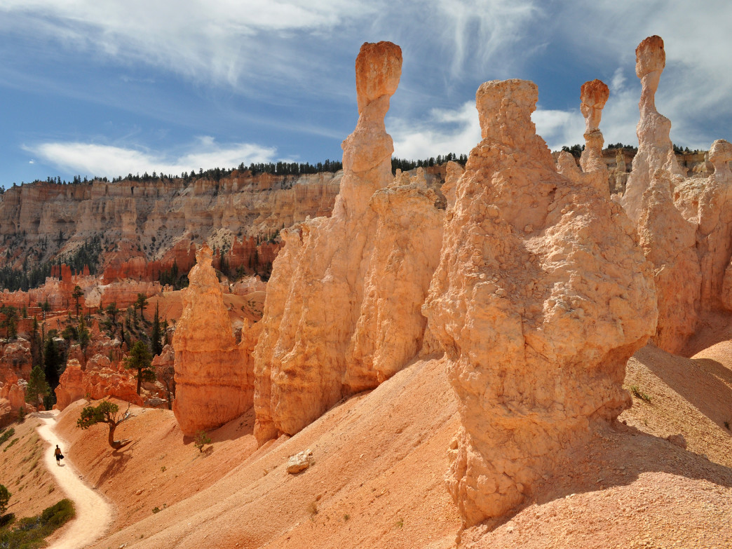 A sampling of the famous hoodoos in Bryce Canyon.