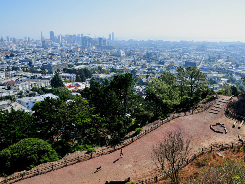 San Francisco is full of options for great trail running.