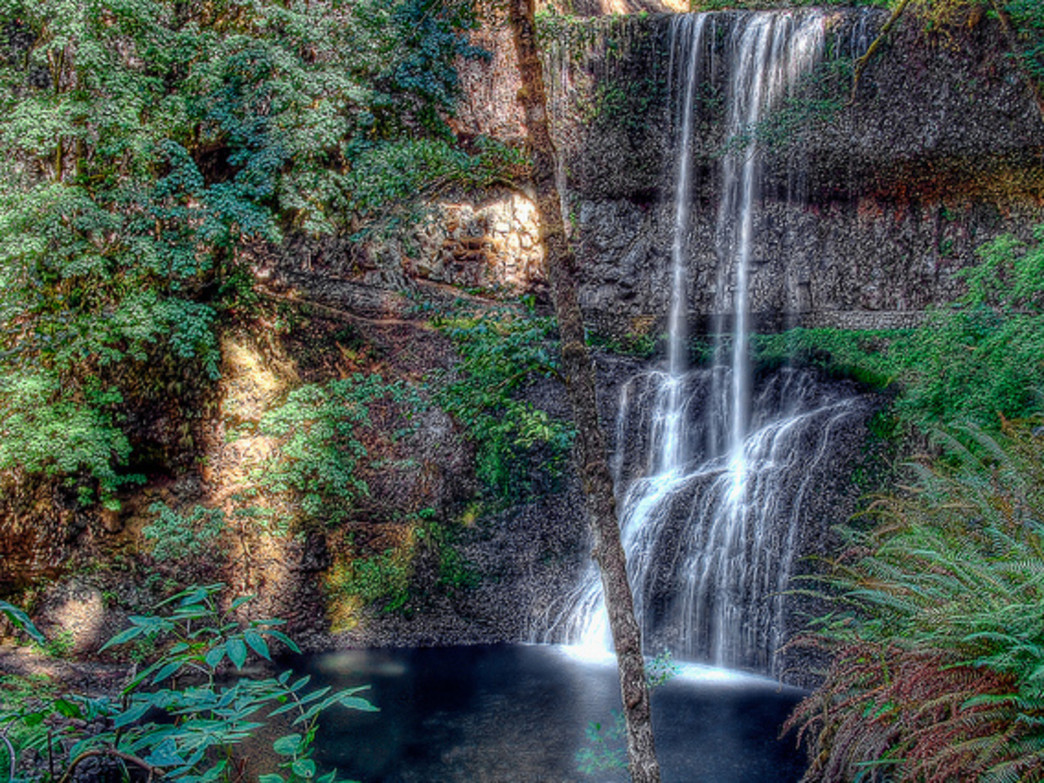 Silver Falls State Park offers numerous opportunities to view or hike behind towering waterfalls.