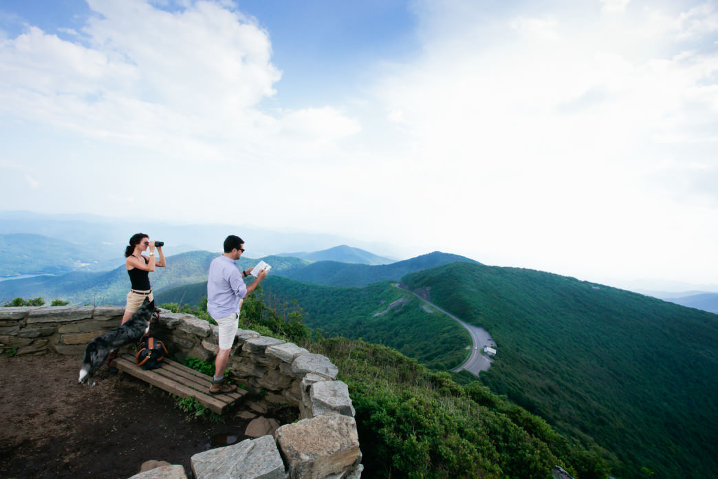 Craggy Gardens is a must-do hike for active dogs and their owners.