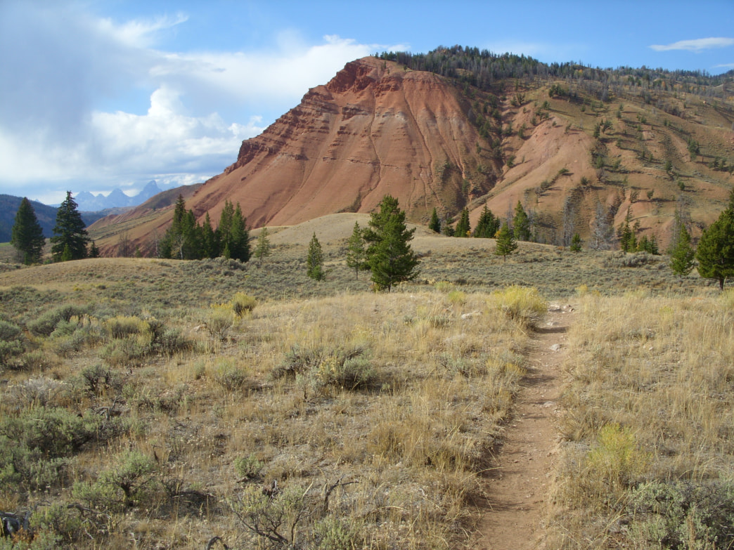 Head out on the Grizzly Lake trail for great views of the Red Hills.