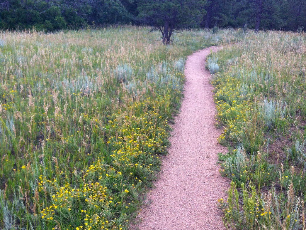 Using our trails is more fun when they're well-maintained.
