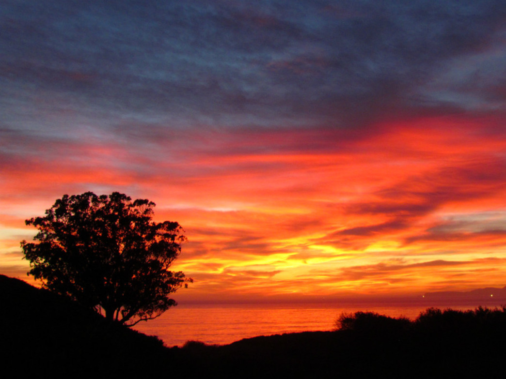 Sunsets like this are yours for the taking during overnight trips to Point Reyes.