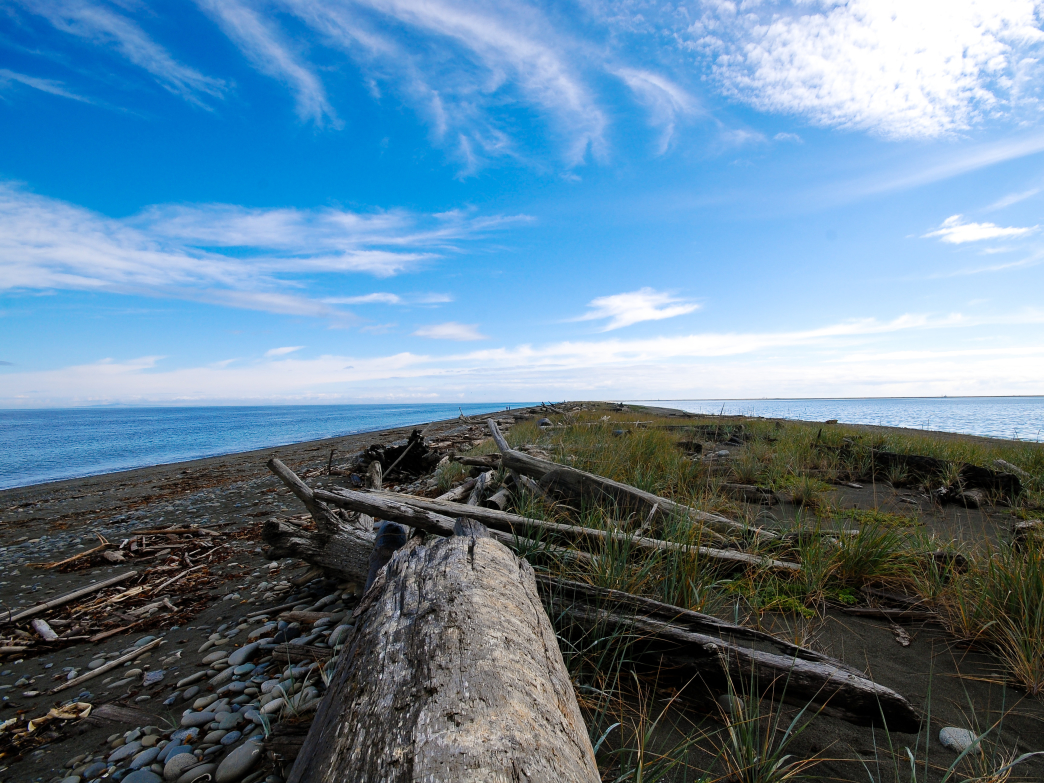 The walk along Dungeness Spit on the Strait of Juan De Fuca.