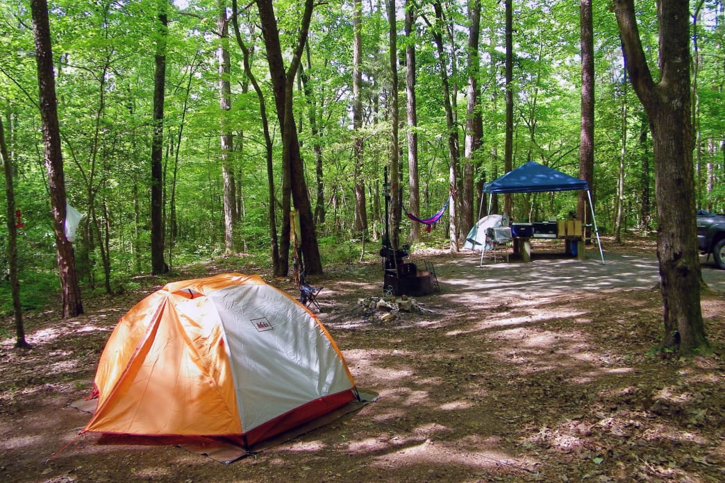 Camp in the Uwharrie National Forest.