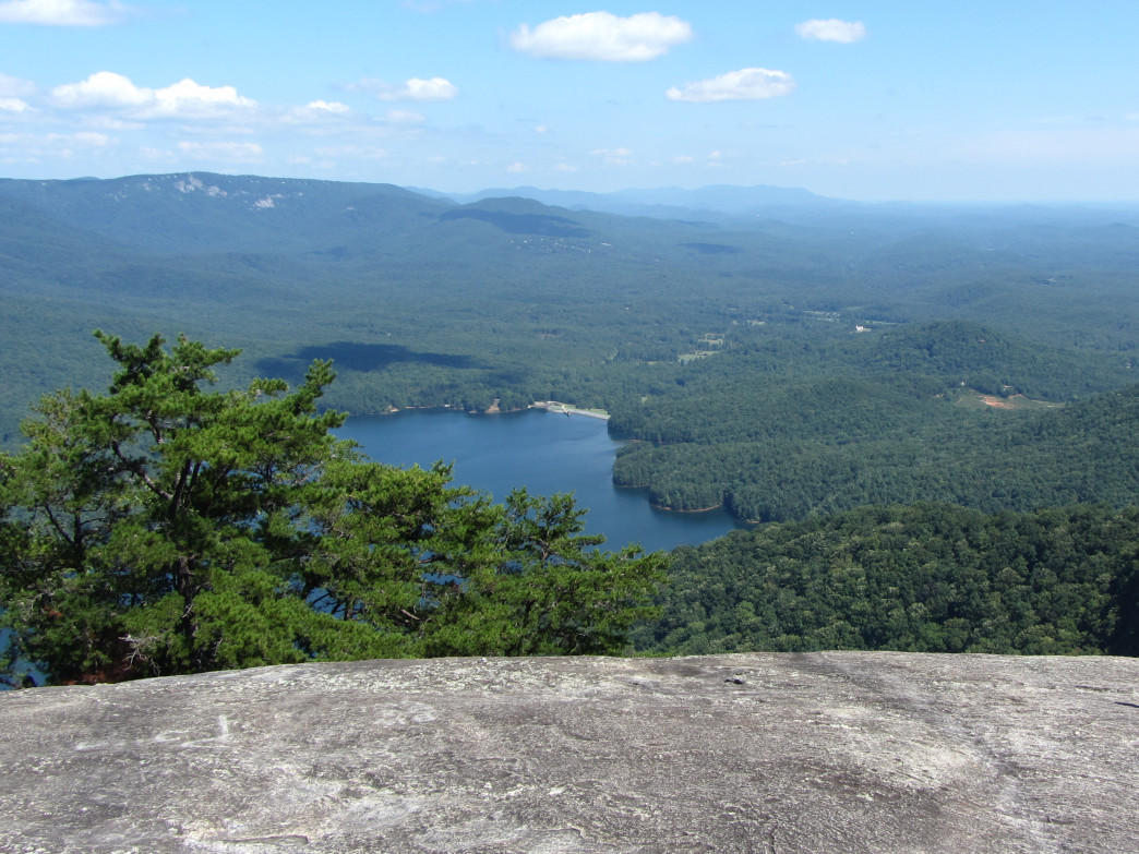 Table Rock State Park in western South Carolina is a popular hiking destination, and an app on your smartphone can help you identify the wildlife on the trail.