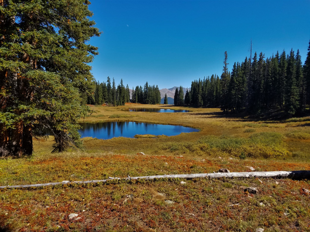 Pass the ponds near Wheeler Lakes en route to views of Copper Mountain.    Graham Silver