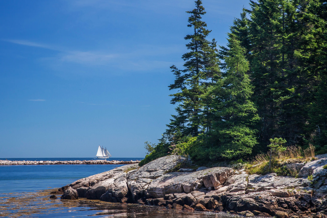 Take your pick of some 600 campsites in Maine's only national park.