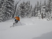 Image for Taylor Mountain--Skiing