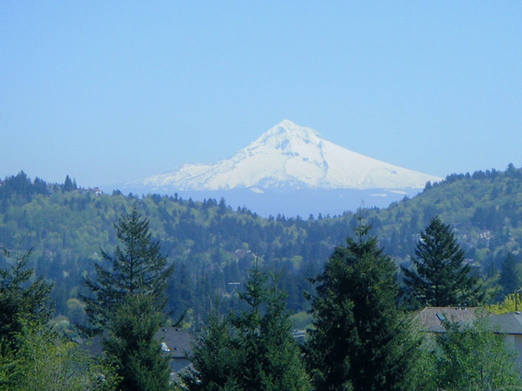 Mount Hood, the highest peak in Oregon, is visible from Powell Butte Nature Park.