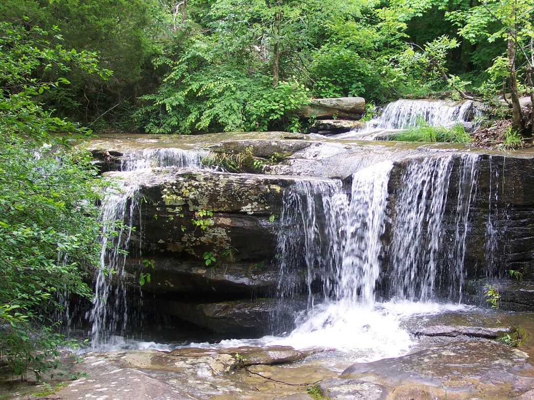 Burden Falls in the Shawnee National Forest is one of the state's largest.