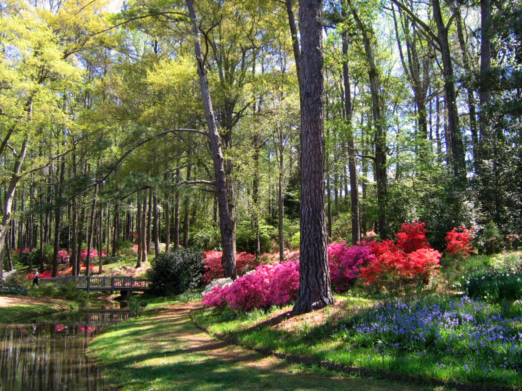 Atlanta's many parks make wonderful places for families to find outdoor adventures.