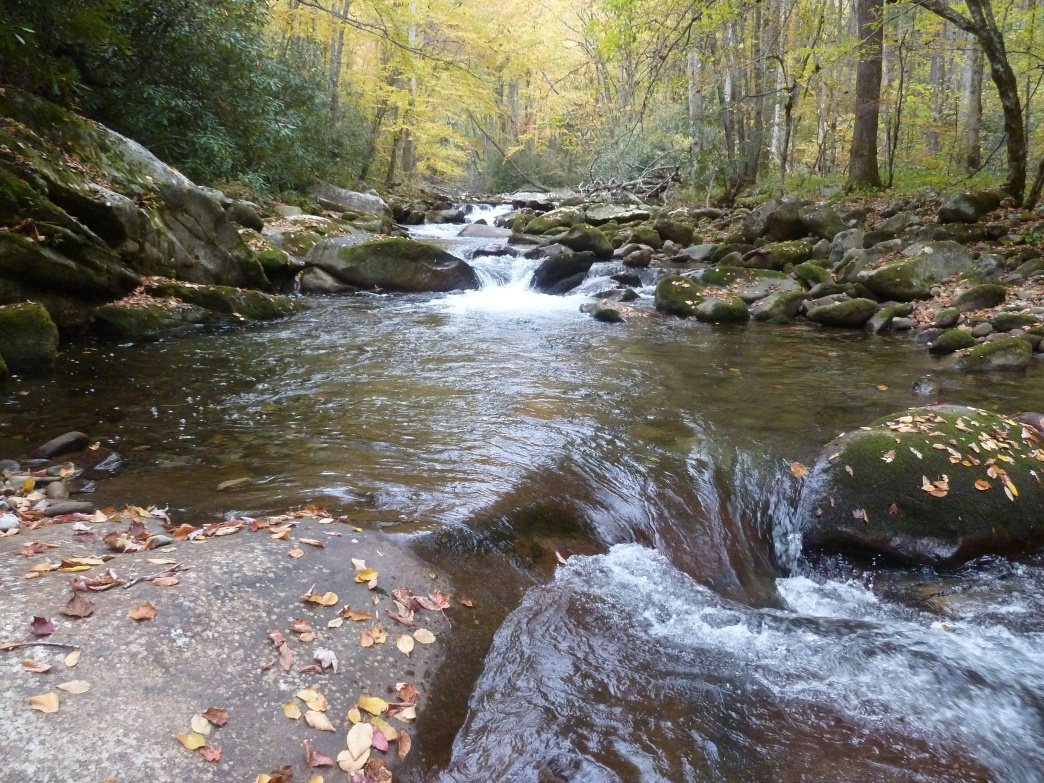 The Smokies offers lots of opportunities to stop and soak tired feet in chilly mountain streams