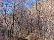 Image for Bear Creek Trail at Lair O' the Bear Park